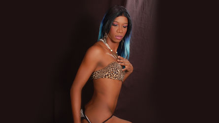 xxmichelledolls's profile picture – Transgender on LiveJasmin