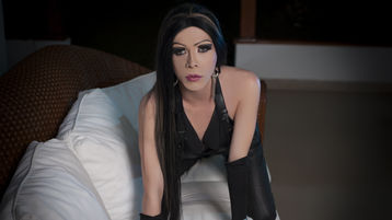Веб сайт транссексуалов