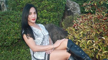 PerfectCumForYou'n kuuma webkamera show – Trans-sukupuoliset Jasminssa