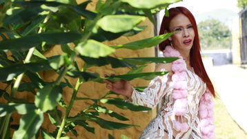 LatinaaHot's hot webcam show – Transgender on Jasmin